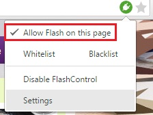 allow_flash_on_page.jpg